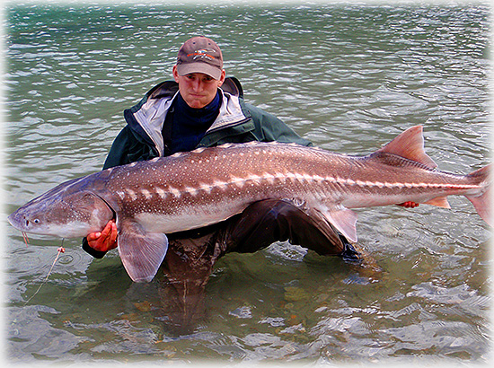 Image result for world best photos fishing